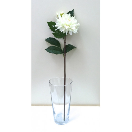 FL99-0014 Георгина  эксклюзивная ванильная ( 2 цветка)