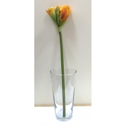 FL99-0022 Амариллис оранжевый
