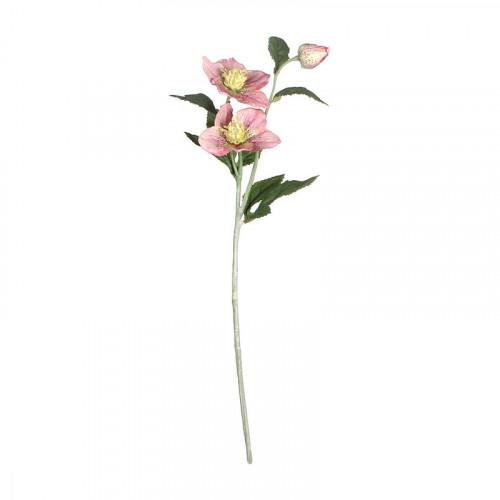 FL99-0059 Искусственный цветок Хелеборус розовый